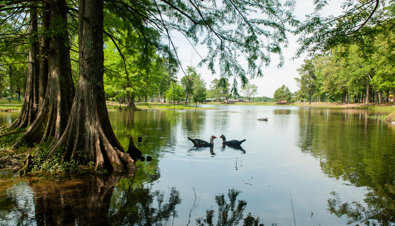 Romantic Getaway In Texarkana Arkansas Things To Do In Texarkana